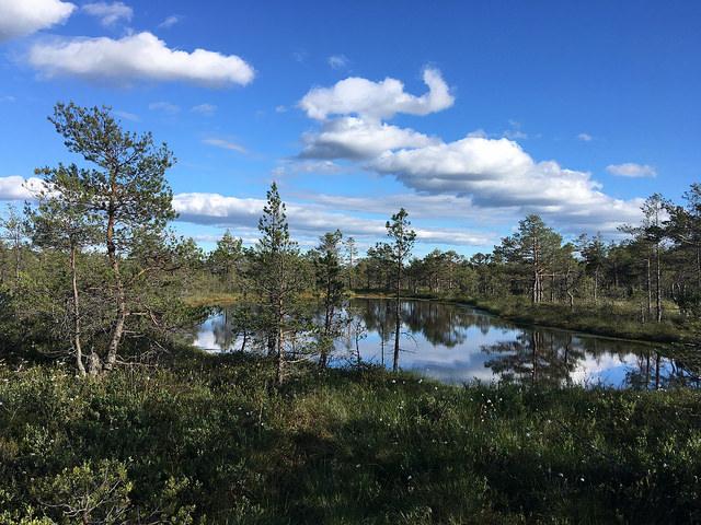 Maastopyöräilymatka Lahemaan (Viro) kansallispuistossa